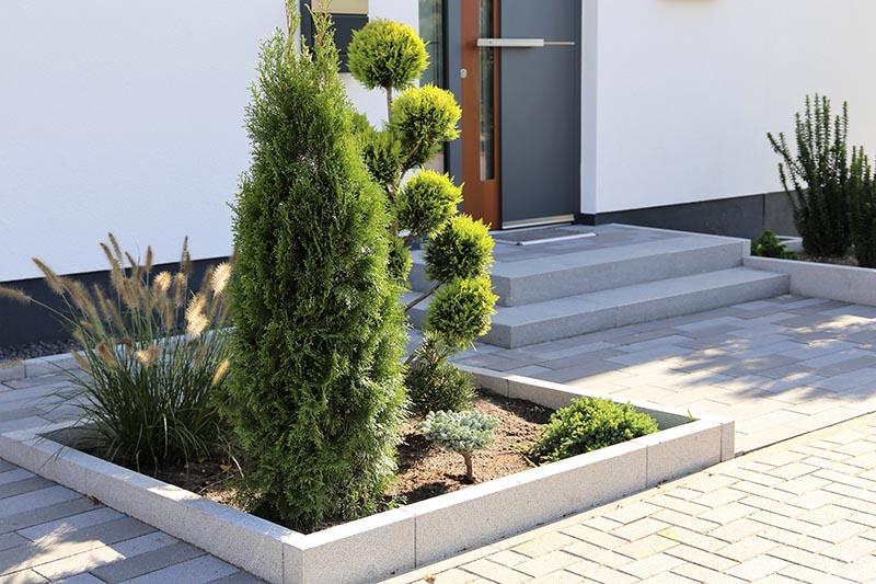 Pflegeleichter Vorgarten durch durchdachte Pflanzenwahl