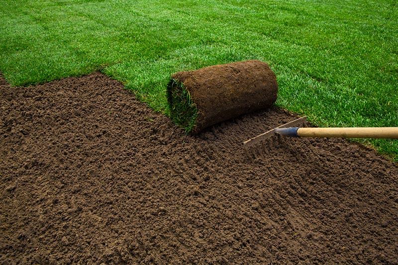 Bodenvorbereitung für den Rollrasen