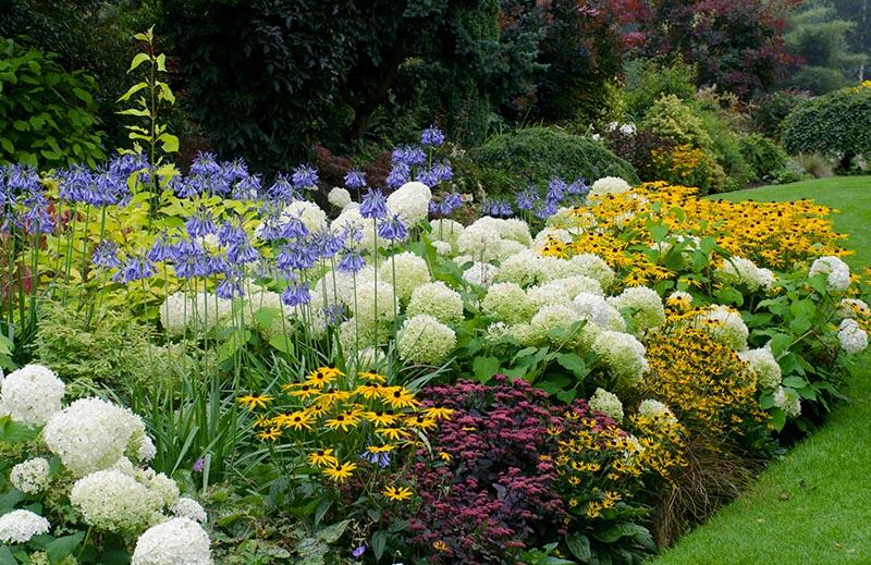 Blühende Beete und Rabatten