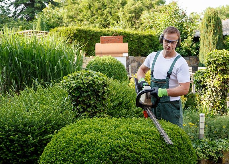 GARTENBAU SCHUMACHER bietet professionelle Gartenpflege